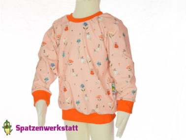 """Kinder- Pullover Raglanpullover """"Mäuse"""""""