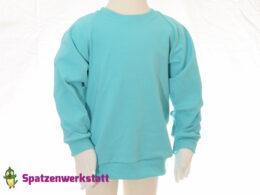 "Pullover ""mint"" - Jersey mit Raglanärmeln"